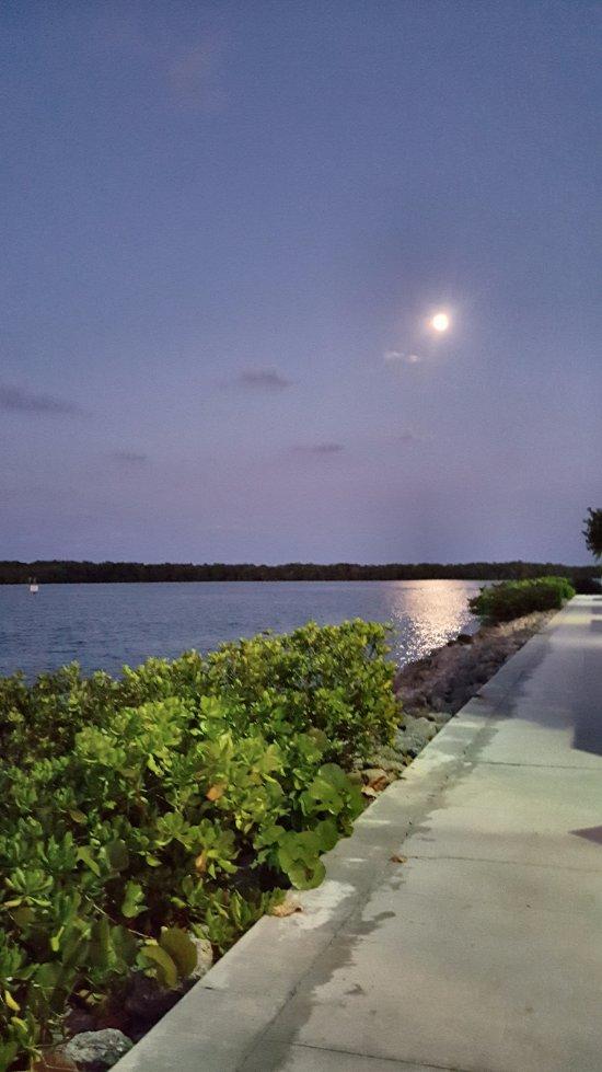 Sandpiper S Cove Restaurant And Bar North Palm Beach Fl