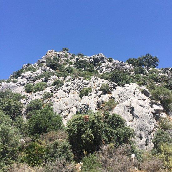 Pileta Caves (Cueva de la Pileta) (Benaojan, Spain): Top Tips Before You Go -...