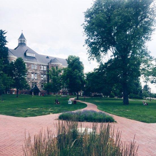 University Of Denver: Top Tips Before You Go