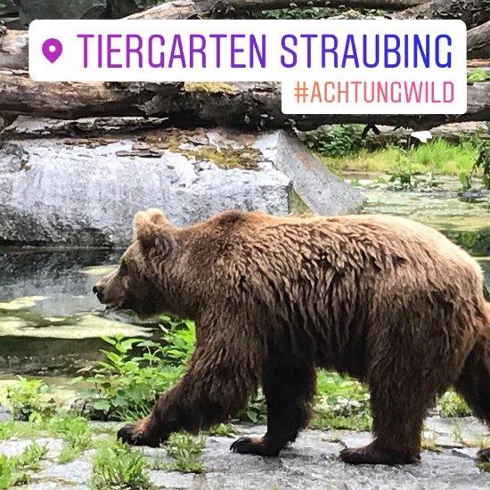 Straubinger Tiergarten