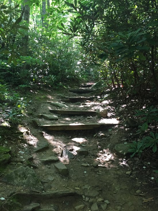 Things To Do in Catawba Falls, Restaurants in Catawba Falls