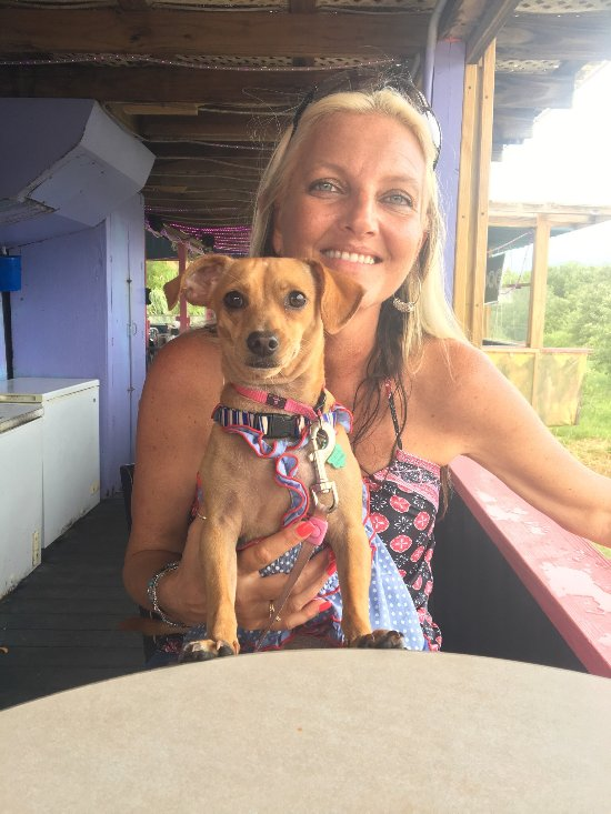 Dog Friendly Restaurants In Cedar Key Florida