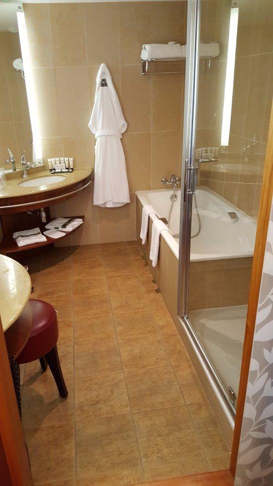 hotel parc beaumont updated 2018 reviews price comparison pau france tripadvisor. Black Bedroom Furniture Sets. Home Design Ideas