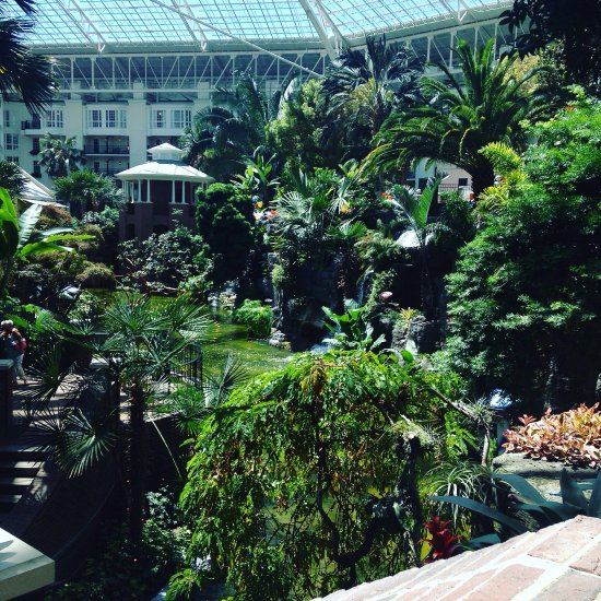Nashville Restaurants Near Gaylord Opryland