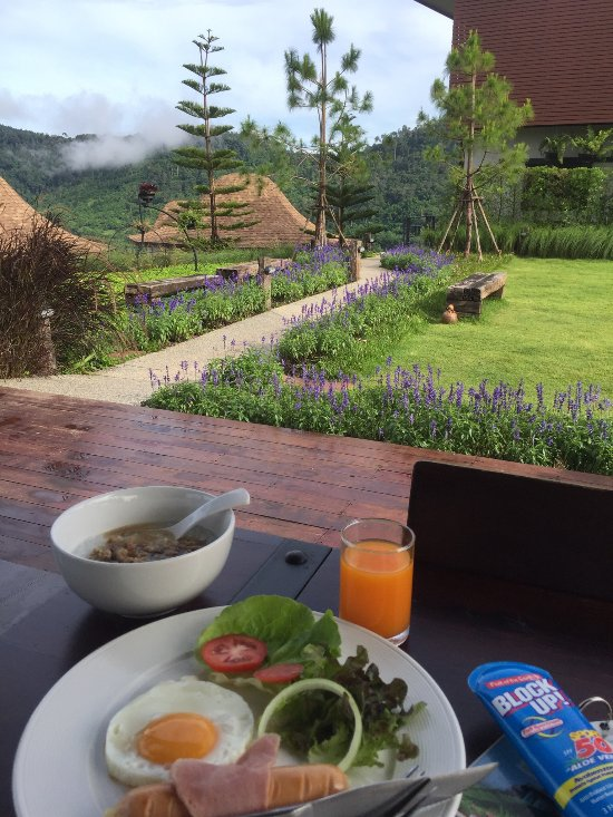 At Tree Resort Khaokho Updated 2019 Hotel Reviews And 22