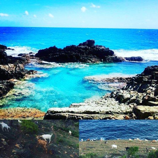 Philipsburg Ny: Guana Bay Beach (Philipsburg, St. Maarten-St. Martin): Top