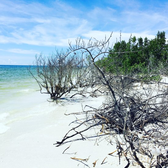 Marco Island Beach: Tigertail Beach (Marco Island, FL): Top Tips Before You Go