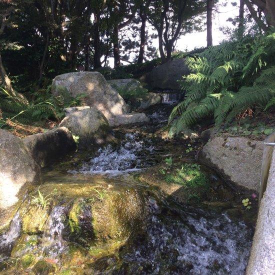 Jardin japonais le havre france top tips before you go for Jardin japonais le havre