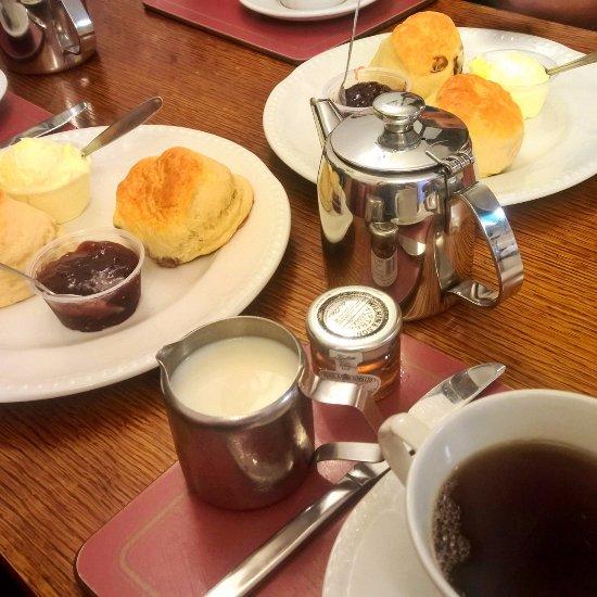 Mad Hatter Tea Rooms Lyndhurst