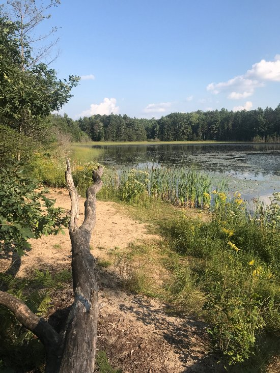 Things To Do in Traverse Area Recreation and Transportation Trails, Restaurants in Traverse Area Recreation and Transportation Trails