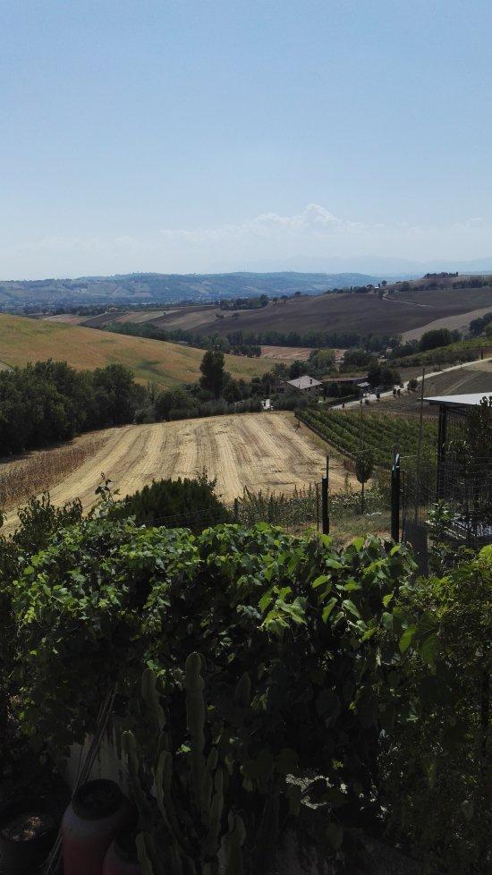 Il giardino dei sapori recanati ristorante recensioni numero di telefono foto tripadvisor - Giardino dei sapori calvenzano ...