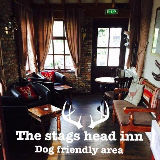 Dog Friendly Hotels In Hull Uk