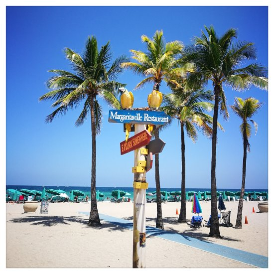Hollywood beach all you need to know before you go for Hollywood beach resort haunted