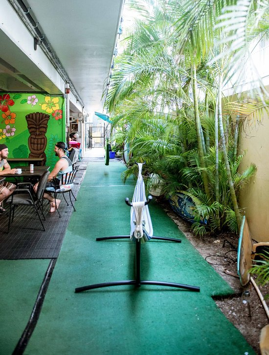 Polynesian Hostel Beach Club Reviews Price Comparison