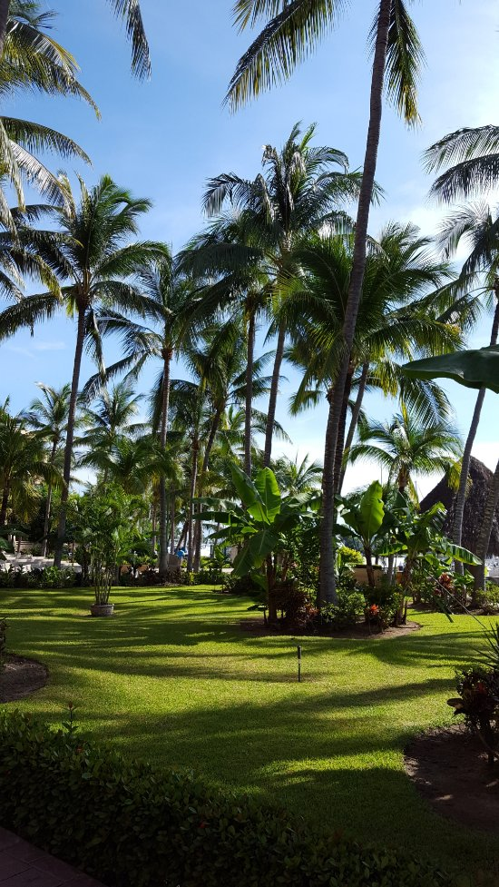 paradise village beach resort spa updated 2017 reviews. Black Bedroom Furniture Sets. Home Design Ideas