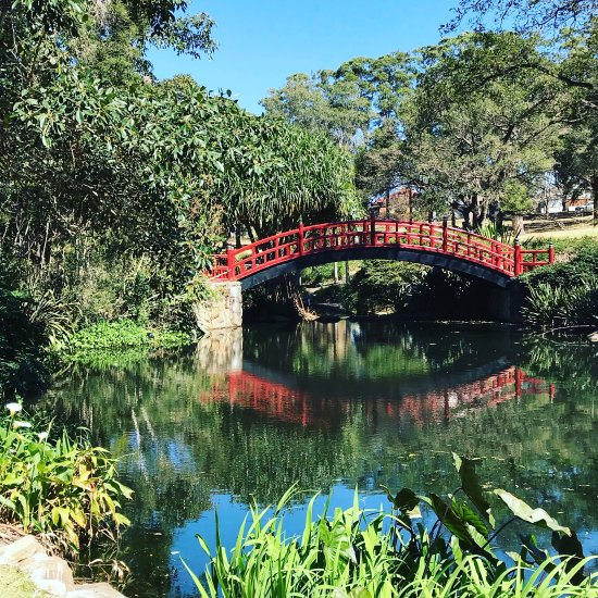Wollongong botanic garden australia top tips before you for Gardening 101 australia