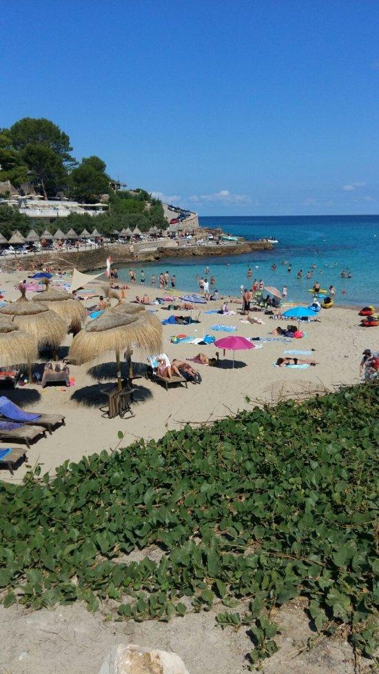 Hotel Sentido Don Pedro Mallorca