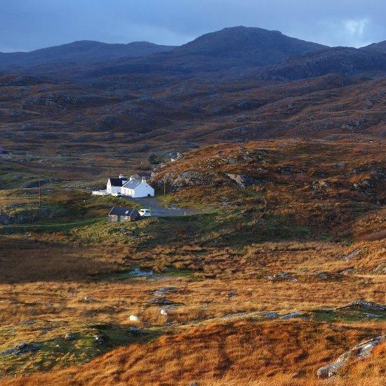 Image Skoon Art Cafe in Highlands and Islands