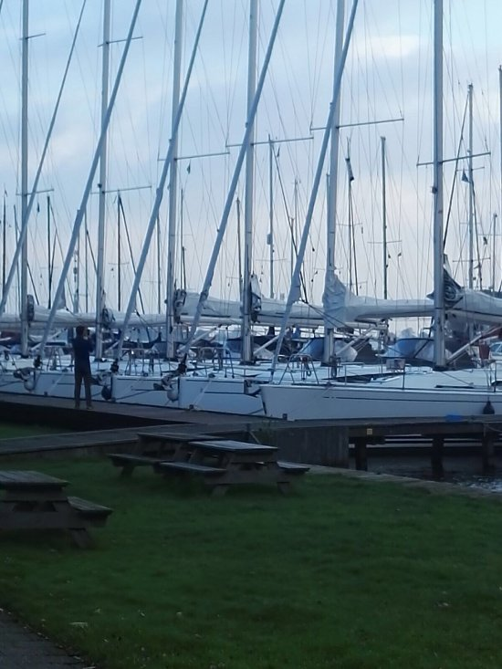 Things To Do in Sailingtrips Zuiderzee, Restaurants in Sailingtrips Zuiderzee