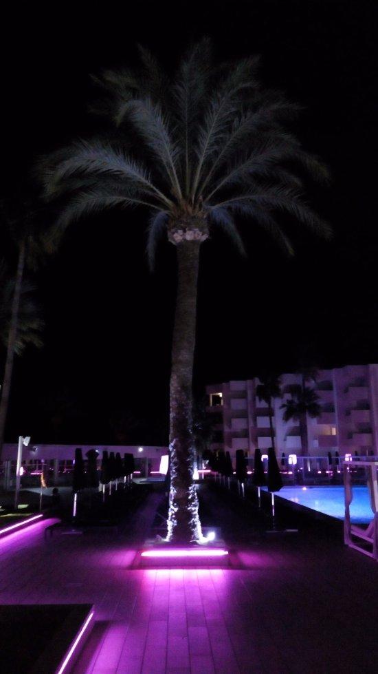 Hotel garbi ibiza spa playa d 39 en bossa reviews - El limonero ibiza ...