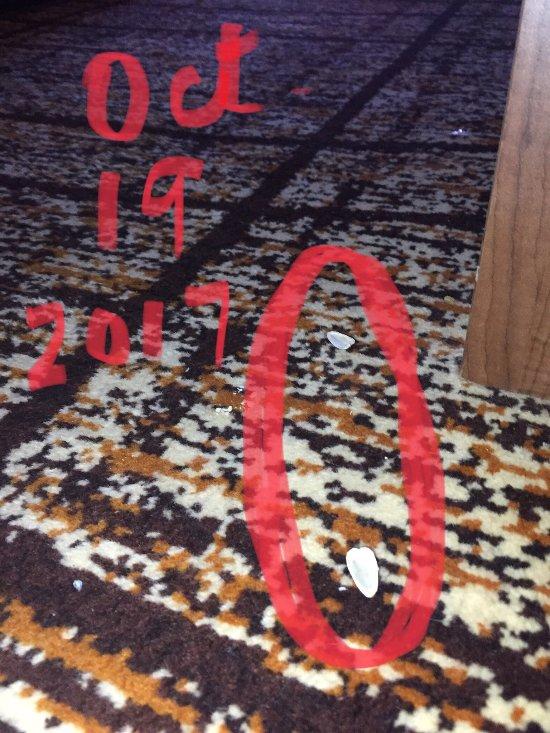 Carpet Cleaning In Ponca City Oklahoma Carpet Vidalondon