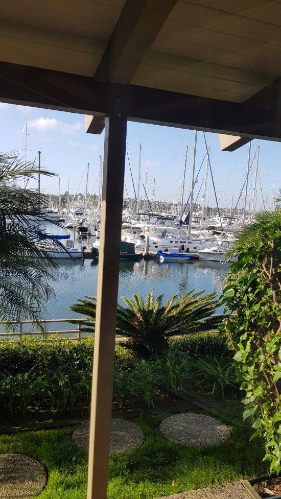 Best Western Plus Island Palms Hotel Amp Marina 114