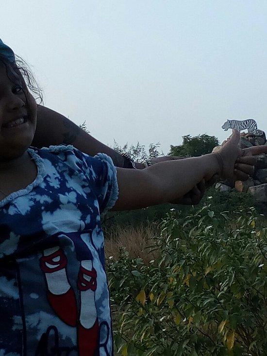 Jhansi Herbal Garden 2021 Lo Que Se Debe Saber Antes De Viajar Tripadvisor