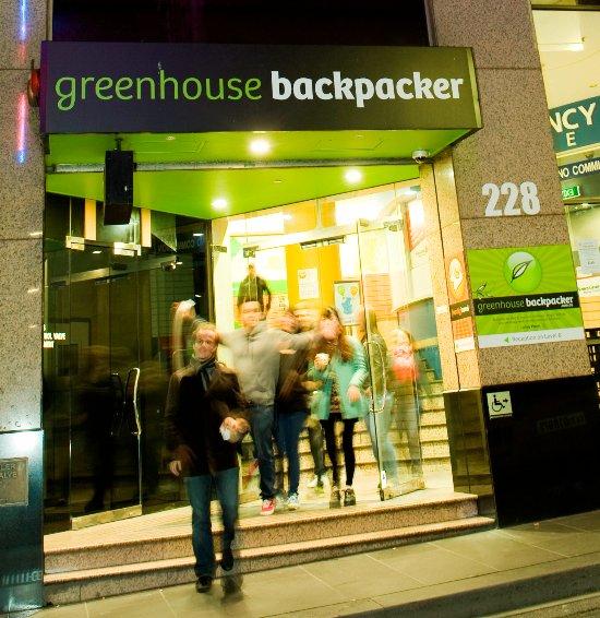 the greenhouse backpacker updated 2017 hostel reviews. Black Bedroom Furniture Sets. Home Design Ideas