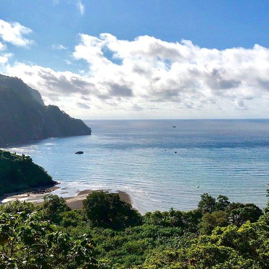 さっそくチェック:ココ島ココ島の旅行情報
