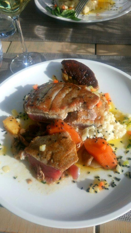 Le poisson rouge frontignan 32 rue paul riquet for Poisson rouge vacances nourriture