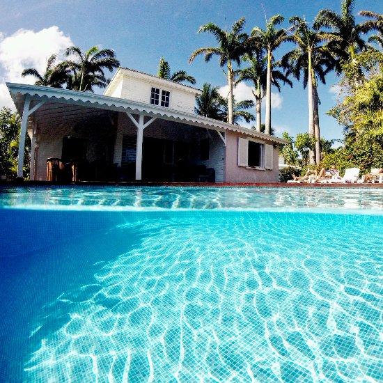 Aquarelle 39 s villas hotel sainte rose guadeloupe voir for Aquarelle piscine hotel seneffe