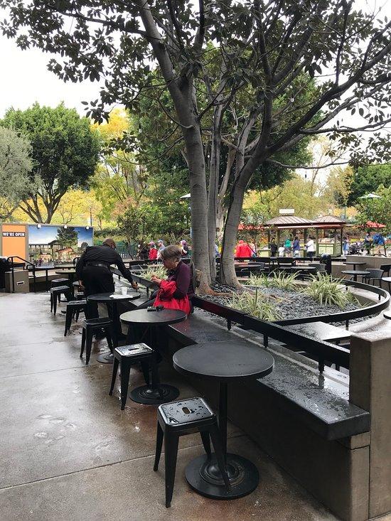 Downtown Disney Fast Food Restaurants