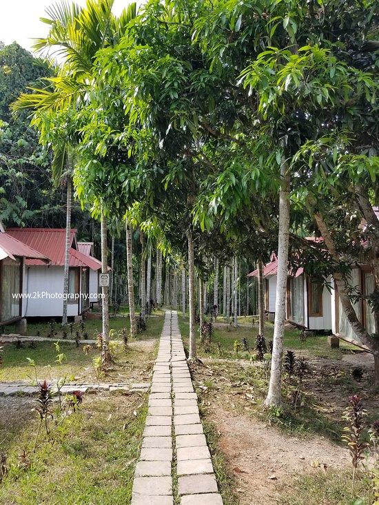 Havelock Nagri Resort