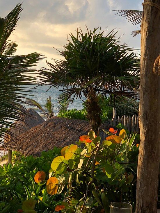 La Valise Tulum Mexique Voir Les Tarifs Et Avis Hotel Tripadvisor