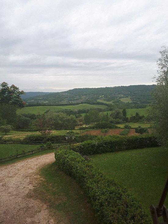 La vecchia fattoria orte ristorante recensioni numero for Nuovi piani di vecchia fattoria