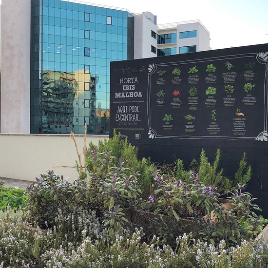 Hotel Ibis Lisboa Jose Malhoa