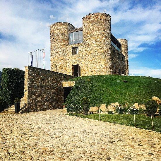 Chateau Copsa Complex