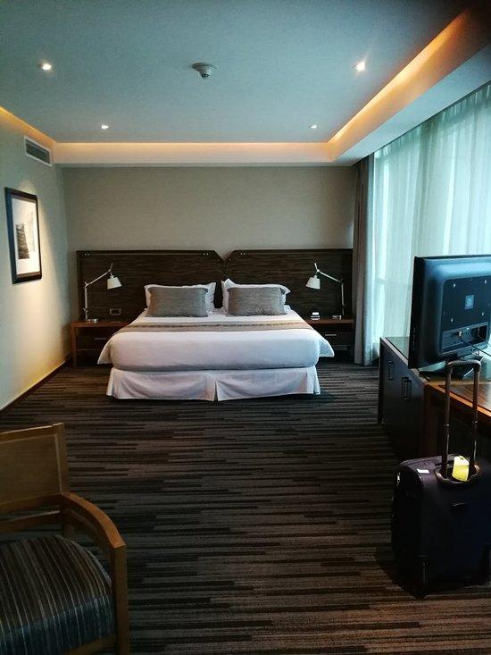 ホテル ドリームズ ペドロ デ バルディビア