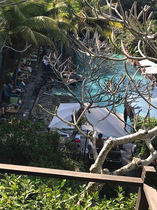 CHAPUNG SEBALI - Updated 2019 Prices & Hotel Reviews (Ubud