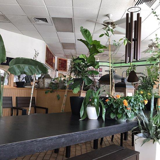 Teriyaki Kitchen Mesa Restaurant Reviews Photos Phone Number Tripadvisor