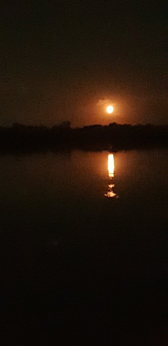 The moon rise !
