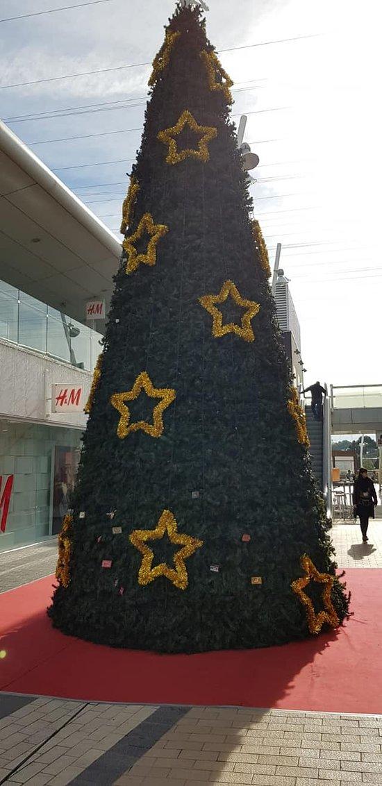 Weihnachtsbaum in Porto Pi
