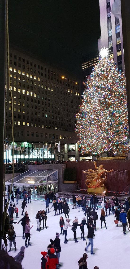 You haven't done new york if you haven't seen the tree