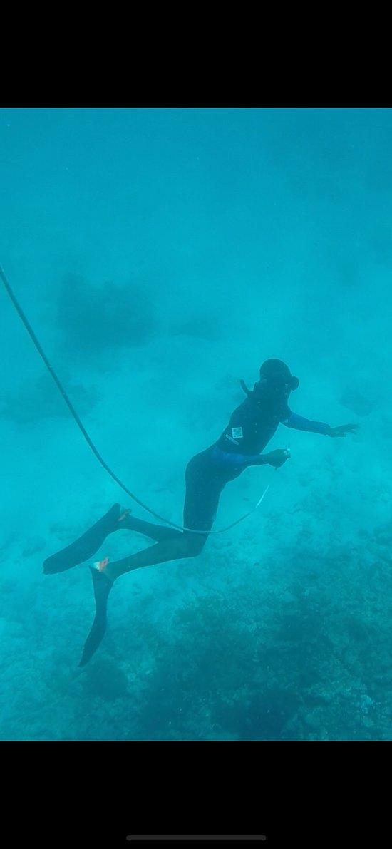 Schnorchel Tour Mnemba Atoll