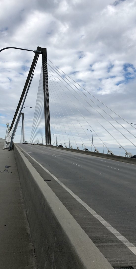 小亚瑟·罗芙奥大桥 (查尔斯顿) - 旅游景点点评 - TripAdvisor