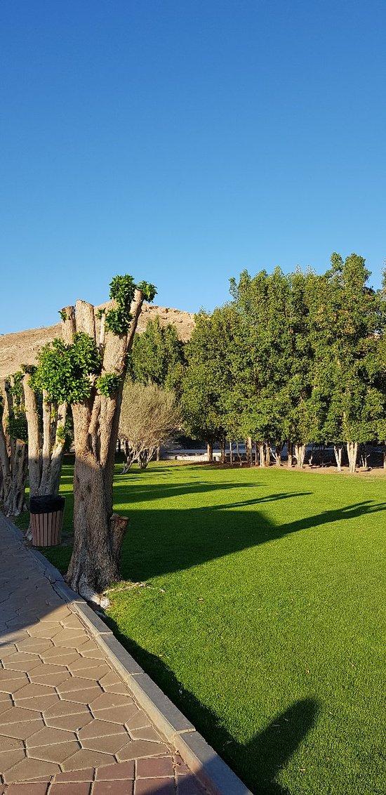 Wadi Kitnah pools