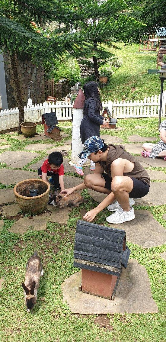 Puncak Rasa Ubud Bali