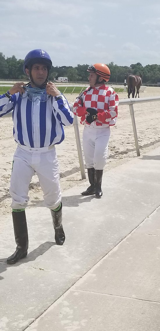Tampa Bay Downs - 2019 Book in Destination - All You Need to Know