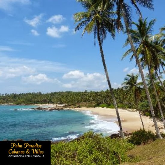 Palm Paradise Cabanas & Villas Beach Resort Tangalle
