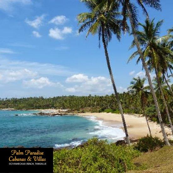 palm paradise cabanas villas beach resort tangalle 36 1 0 3 rh tripadvisor com